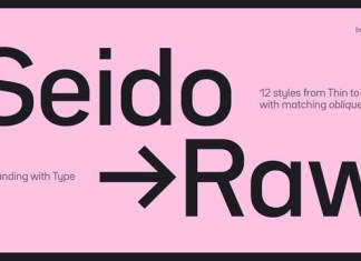 Bw Seido Raw Font