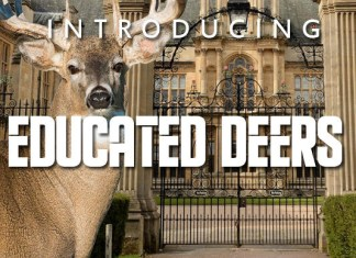 Educated Deers Font