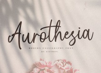Aurotheisa Casual Chic Font