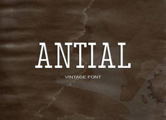 Antial Font