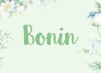 Bonin Font