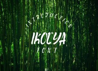Ikocya Font
