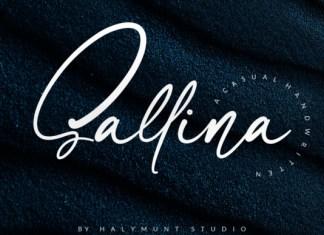 Sallina Font