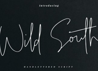 Wild South Font