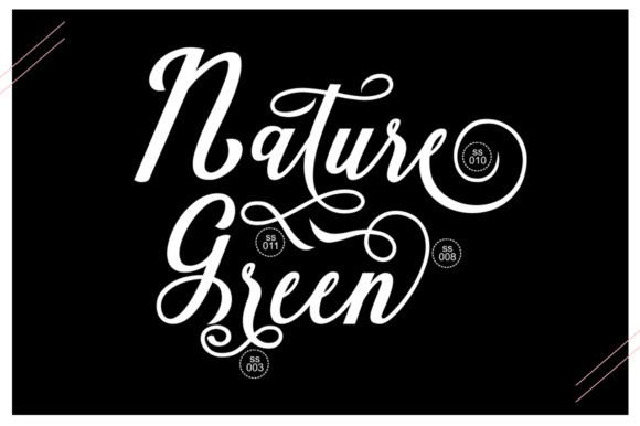 Natural Script Font