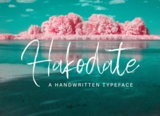 Hakodate Font