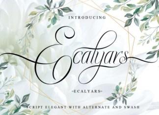 Ecalyars Font