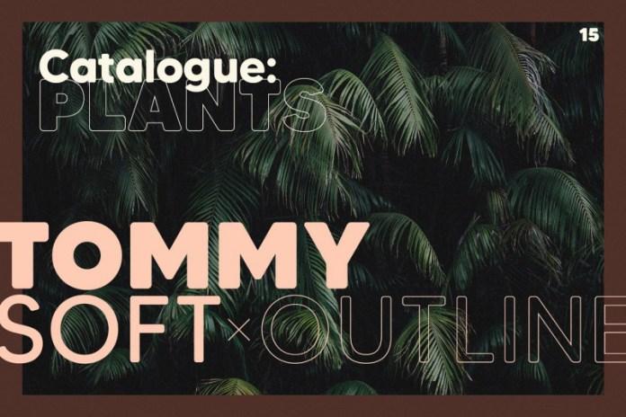 Tommy Soft Font