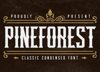 Pineforest Font