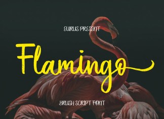 Flamingo Font
