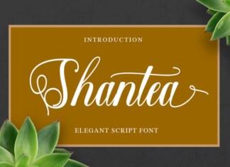 Shantea Font