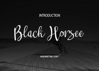 Black Horsee Font