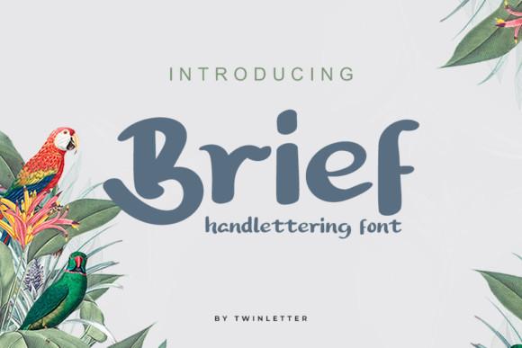 Brief Font