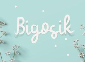 Bigosik Font