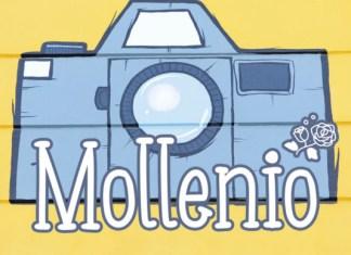 Mollenio Font