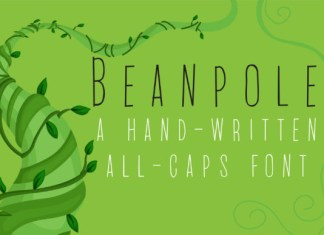 PN Beanpole Font