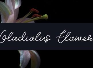 Gladiolus Flower Font