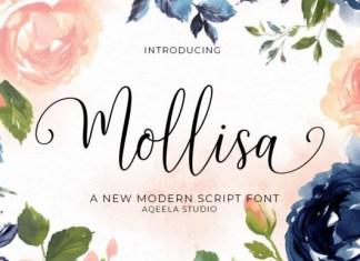 Mollisa Font