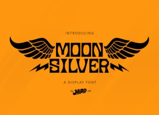 Moon Silver Font