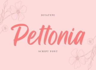 Pettonia Font