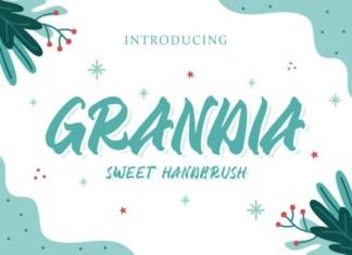 Grandia Font