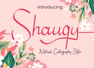 Shauqy Font