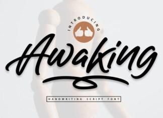 Awaking Font