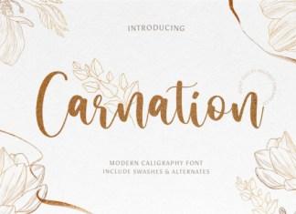 Carnation Font