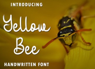 Yellow Bee Font
