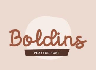 Boldins Font
