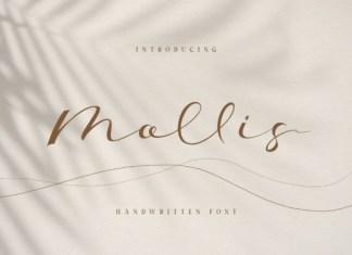Mollis Font