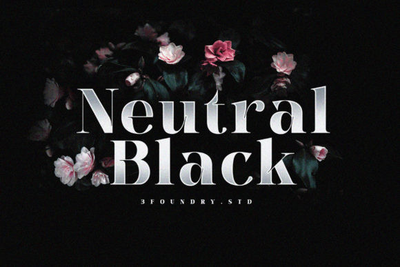 Neutral Black Font