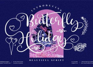 Butterfly Holiday Font
