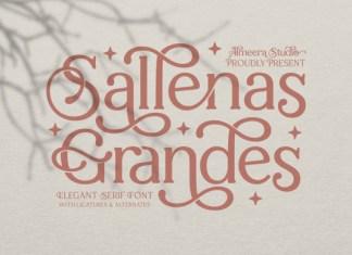 Sallenas Grandes Font