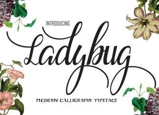 Ladybug Font