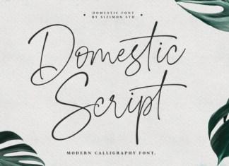 Domestic Font