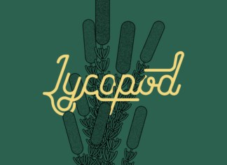 Lycopod Font