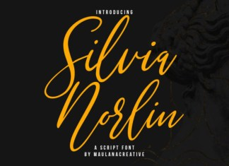 Silvia Norlin Font