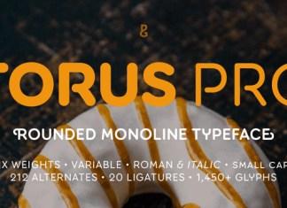 Torus Pro Font