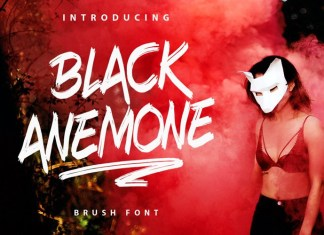 Black Anemone