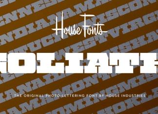 Plinc Goliath Font