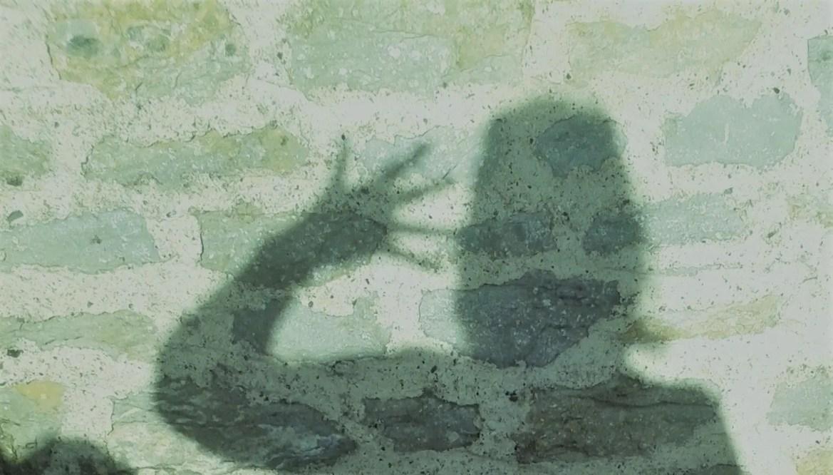 Shadow Banning Stinks, SoSS Smells Sweet