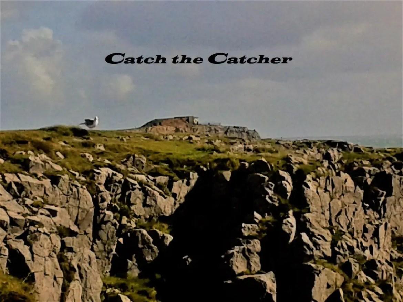 Catch the Catcher