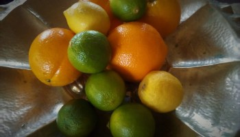 lyme disease lemons and limes and oranges
