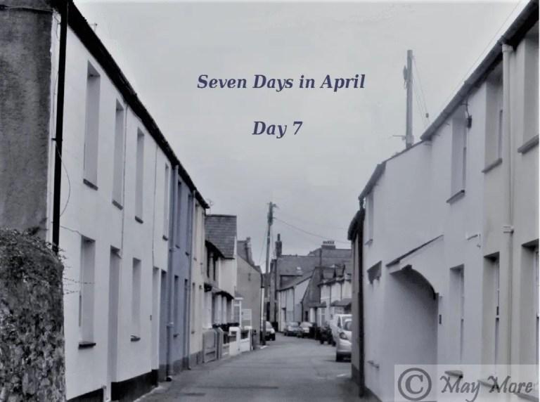 Seven Days ~ Grace will overcome