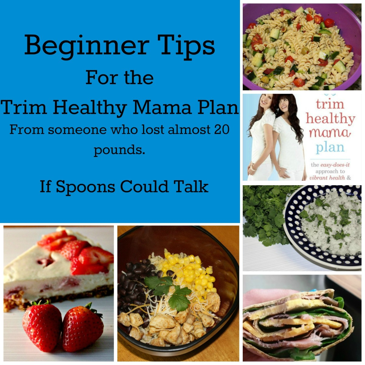 Trim Healthy Mama Tips for Beginners