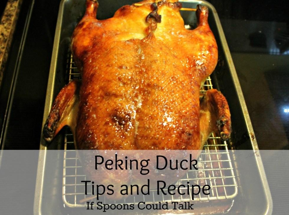 peking-duck-fi