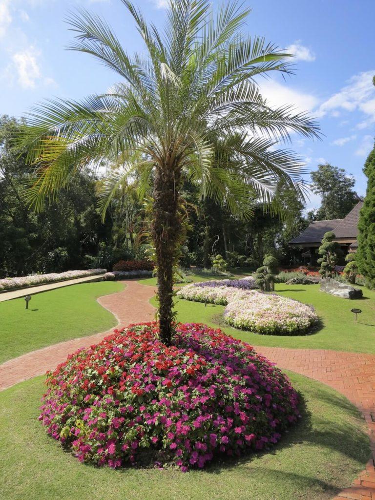 25+ Cozy Palm Tree Landscaping Ideas Photos - Landscape Ideas on Palm Tree Backyard Ideas id=99512