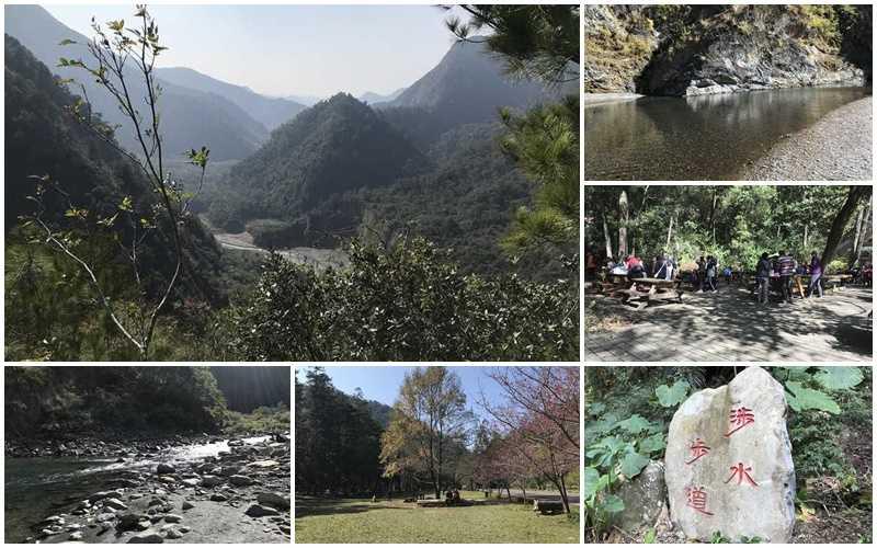 2020【南投仁愛鄉】惠蓀林場一日遊,走進大自然享受愜意的生活吧!
