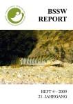 Titelbild Report 4-2009